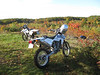 Dirt bike ride in the orchard - 18 Oct :